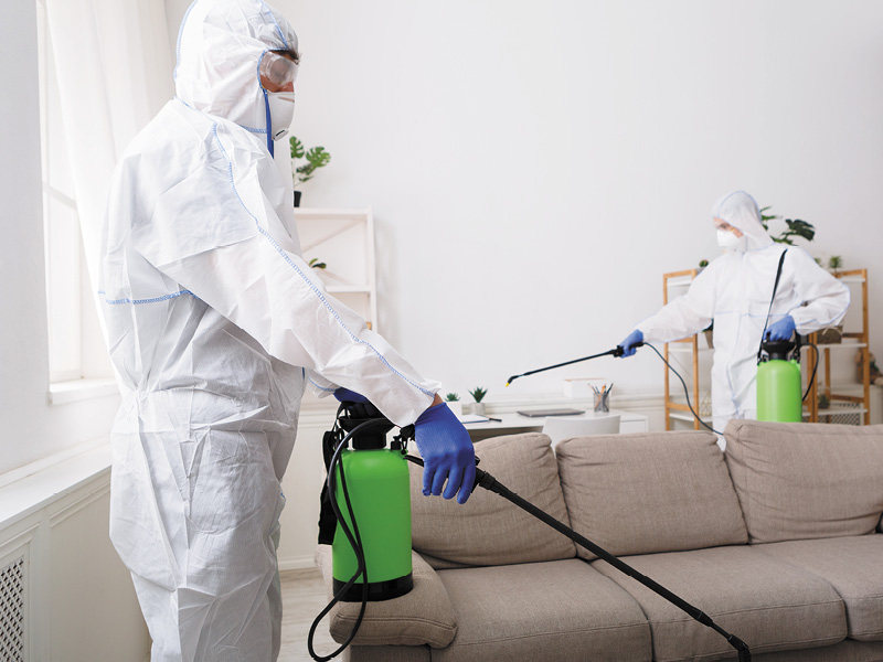 Evite pragas e alergias: realize uma sanitização e desinfecção de ambientes