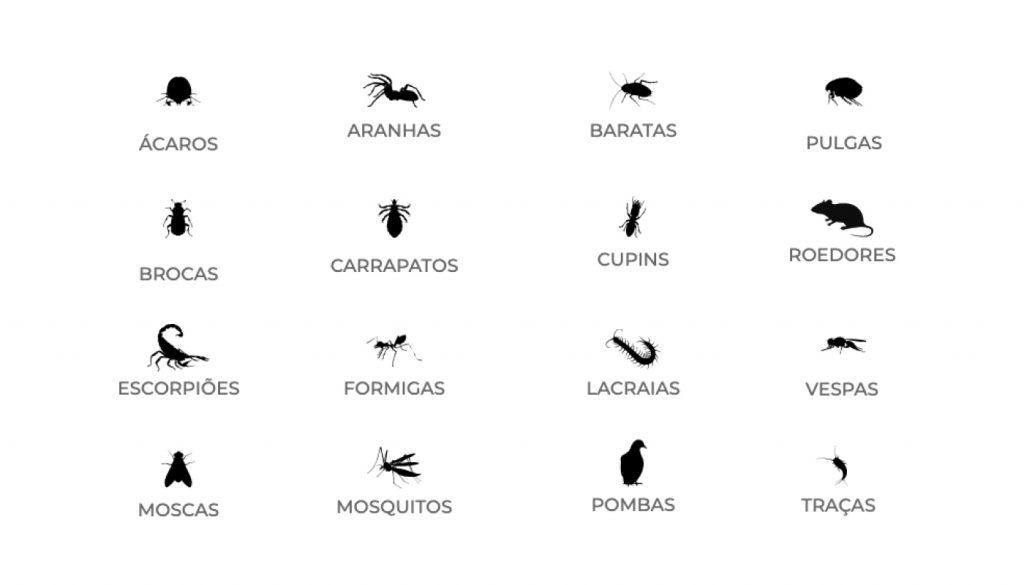 Exemplos de pragas