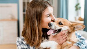 Donos de pet: saiba porque é importante cuidar do controle de pragas no ambiente onde seu amigo reside
